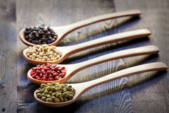 Mixed peppercorns in a wooden spoon Royalty Free Stock Photo