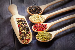 Mixed peppercorns in a wooden spoon Royalty Free Stock Photography