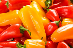 Mixed Peppers Royalty Free Stock Photography