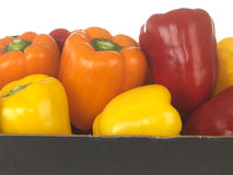 Mixed Peppers Stock Photo