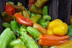 Mixed peppers tumble from farm crate Stock Images