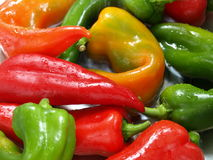 Mixed peppers in water. Fresh mixed peppers in water royalty free stock image