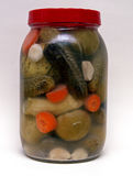 Mixed Pickles Royalty Free Stock Photos