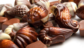 Mixed pieces of chocolate seashell candies Stock Image