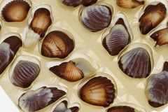 Mixed pieces of chocolate seashell candies Royalty Free Stock Photos