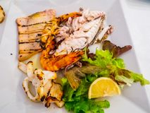 Mixed plate of grilled fish royalty free stock photos