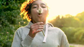 Mixed race African American girl teenager girl young woman blowing dandelion at sunset. 4K video clip of beautiful happy mixed race African American girl stock video footage