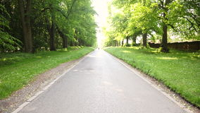Mixed race African American young adult teenager girl running jogging on a tree lined country road stock video