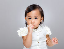 Mixed race baby suck finger Royalty Free Stock Images