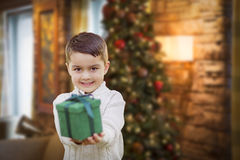 Mixed Race Boy with Christmas Tree Handing Gift Out Front Stock Photo