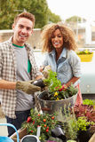 Mixed Race Couple Planting Rooftop Garden Together Stock Image