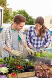 Mixed Race Couple Planting Rooftop Garden Together Royalty Free Stock Photo