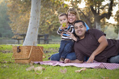 Mixed Race Family Having a Picnic In The Park Stock Photography