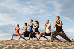 Mixed race group of people exercising yoga healthy lifestyle fitness warrior poses Royalty Free Stock Images