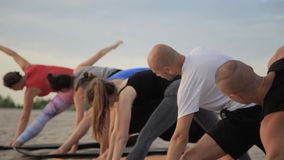 Mixed race group of people exercising yoga healthy lifestyle fitness warrior poses stock video