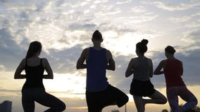 Mixed race group of people exercising yoga healthy lifestyle fitness warrior poses stock video footage