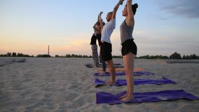 Mixed race group of people exercising yoga healthy lifestyle fitness warrior poses stock footage