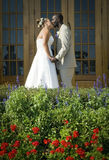 Mixed race wedding couple kiss Stock Images