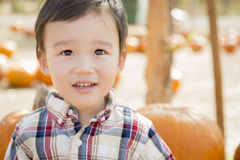 Mixed Race Young Boy Having Fun at the Pumpkin Patch Royalty Free Stock Photography