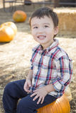 Mixed Race Young Boy Having Fun at the Pumpkin Patch Royalty Free Stock Image