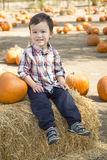Mixed Race Young Boy Having Fun at the Pumpkin Patch Stock Image