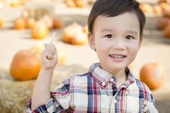 Mixed Race Young Boy Having Fun at the Pumpkin Patch Stock Images