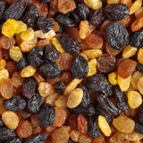 Mixed raisins close up Stock Photography