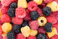 Mixed raspberry  background. Red, yellow, bkack raspberry  background Royalty Free Stock Image
