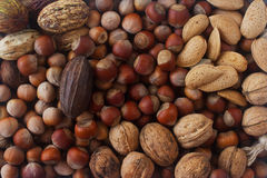 Mixed raw nuts in nutshells - hazelnut, walnut, almond and nutmeg. Healthy lifestyle, dietary product. Royalty Free Stock Photo
