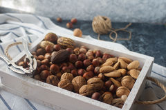 Mixed raw nuts in nutshells - hazelnut, walnut, almond and nutmeg. Healthy lifestyle, dietary product. Royalty Free Stock Images