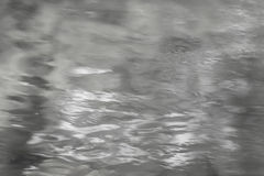Mixed reflection of sunlight and vegetation on the water surface in black & White Royalty Free Stock Photo