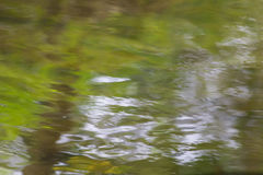 Mixed reflection of sunlight and vegetation on the water surface. Create a beautiful background Royalty Free Stock Photography