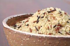 Mixed rice Royalty Free Stock Photo