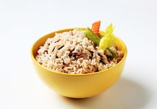 Mixed rice Stock Photography