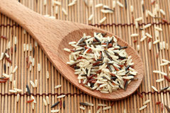 Mixed rice in a wooden spoon. Close-up Stock Photos