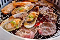 Mixed Roasted Meat and Seafood on the BBQ Grill on roast. Stock Images