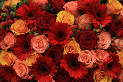 Mixed rose wedding flowers stock image