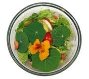 Mixed Salad. Salad made with Roma lettuce, avocado, cherry tomatoes, shakti mushrooms, nuts, lime juice, lemon juice, nasturtium leaves and flower, spike, pepper Royalty Free Stock Photo