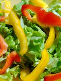 Mixed salad 2 Royalty Free Stock Photo