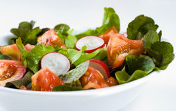 Mixed salad Stock Photography
