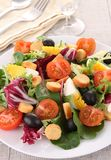 Mixed salad Royalty Free Stock Image