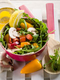 Mixed salad Royalty Free Stock Photos