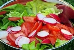 Mixed salad royalty free stock images