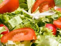 Mixed salad Royalty Free Stock Photos