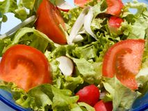 Mixed salad. Triple color mixed salad Stock Image