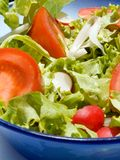 Mixed salad. Triple color mixed salad Stock Images