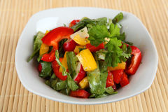 Mixed salad. A mixed salad in a bowl Stock Image