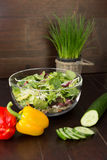 Mixed salad Stock Images