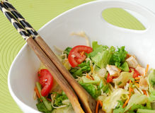 Mixed salad with chicken and cheese Royalty Free Stock Image