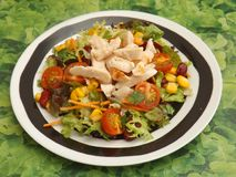 Mixed salad with chicken Stock Images